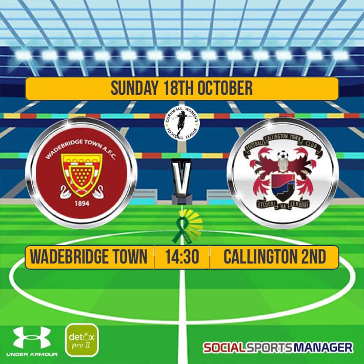 Wadebridge Ladies v Callington