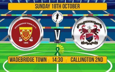 Match Report: Wadebridge Town Ladies 0 v 3 Callington LFC 2nds